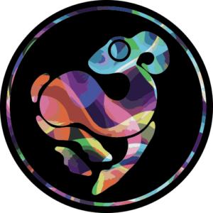 Colourwhirl Full Logo – Slipmat