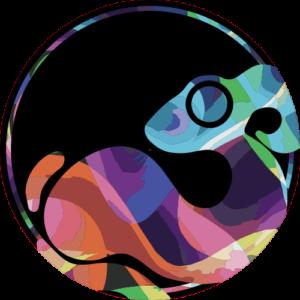 Colourwhirl Logo – Zoom