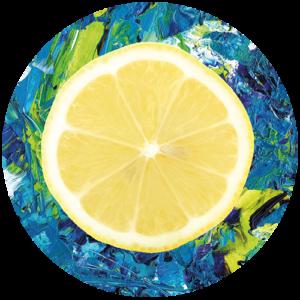 Lemon & Paint Slipmat